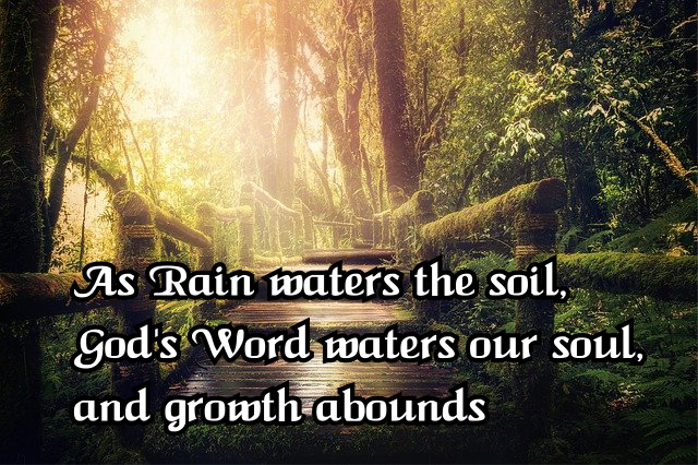 As rain waters the soil God's Word waters our soul, and growth abounds