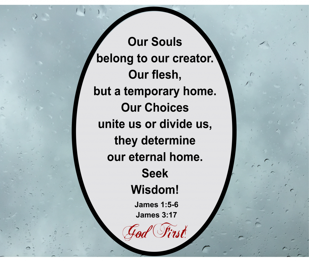 Our Souls belong to our creator. Our flesh, but a temporary home. Our Choices unite us or divide us. They determine our eternal home. Seek Wisdom! James 1:5-6, James 3:17  God First!