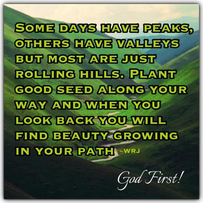 Some days have peaks, others have valleys but most are just rolling hills. Plant good seed along your way and when you look back you will find beauty growing in your path